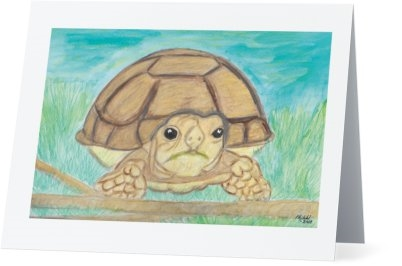 """African Spurred Tortoise"" Note Cards"