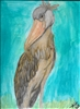 """Shoebill Stork"" Zoo Print"