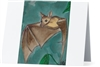 """Flying Fox Bat"" Note Cards"