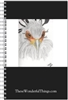 Secretary Bird #3 Journal