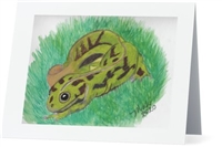 """Marbled Newt"" Note Cards"
