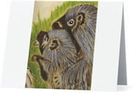 """Porcupine #3"" Note Cards"