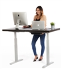 Full Sized Electric Standing Desk