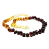 The Amber Monkey Polished Baroque Baltic Amber 10-11 inch Necklace - Rainbow POP