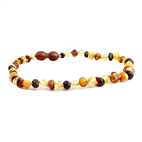 The Amber Monkey Polished Baroque Baltic Amber 12-13 inch Necklace - Multi POP