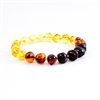 The Amber Monkey Polished Baltic Amber Rainbow Baroque Bracelet- 7-8 inch Screw Clasp