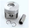 TB-25-39419-00 OEM PISTON ASSEMBLY STD VECTOR™