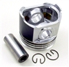 TB-25-39428-00 OEM PISTON ASSEMBLY 25MM VECTOR™