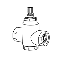 "Flow Check Valve, 1"" threaded"