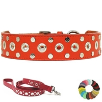 Custom Leather Dog Collar | Studs and Eyelet