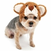 Teddy Bear Hat Dog Costume