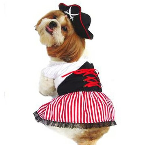 Alternative Views  sc 1 st  Snooty Pooch Boutique & Pirate Girl Halloween Dog Costumes