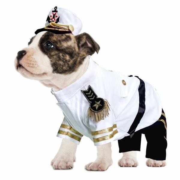 navy admiral dog costume