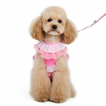 Small Dog Harness | Pink Ruffles
