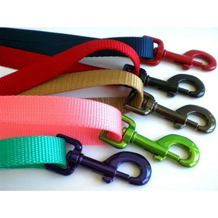 Custom Nylon Dog Leashes