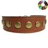 Brass Studs Tapered Leather Dog Collar