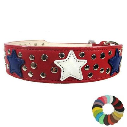 Leather Dog Collar | Stars and Studs
