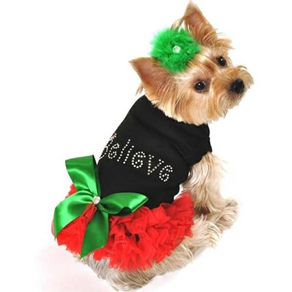 Christmas dog clothes | Believe Christmas Dog Dress