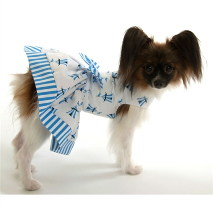 Circus Tents Designer Dog Dress