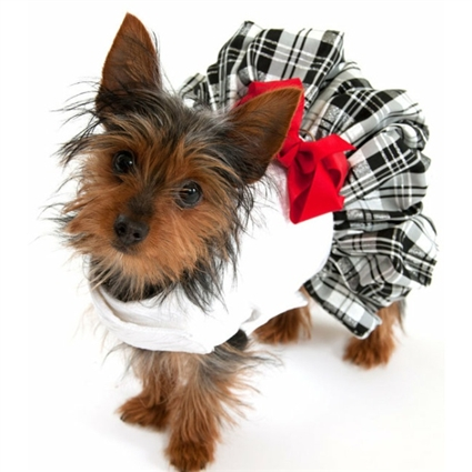 Designer Dog Dress with Plaid Taffeta Skirt
