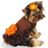 Autumn Brooke Designer Dress for Dogs
