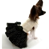 Elegant Black and Gold Small Dog Dress