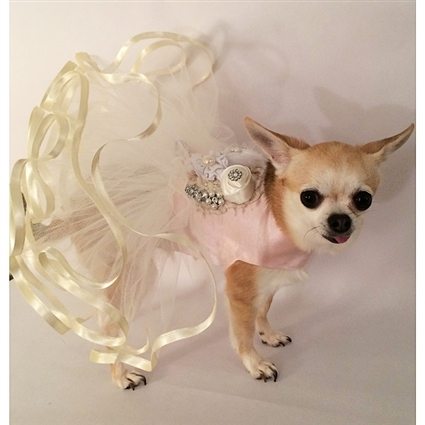 Blushing Bride Satin Designer Dog Dress