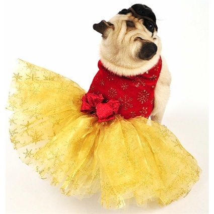 Golden Christmas Dog Dress | The Doggie Market
