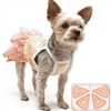 Citrus Orange Summer Dog Dress