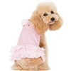 Pink Summertime Designer Dog Dress