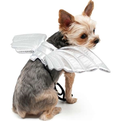 Angel Wings Halloween Dog Costume