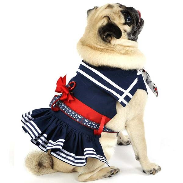 sc 1 st  Snooty Pooch Boutique & Little Red White and Blue Sailor Dog Dress