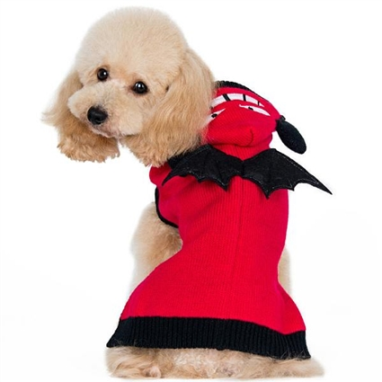 Little Devil Dog Sweater