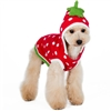 Cute Strawberry Dog Sweater | Costume