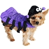 Purple Spider Halloween Dog Costumes