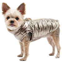 Metallic Gold Dog Coat