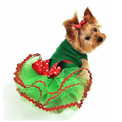 Noel Christmas Small Dog Dress