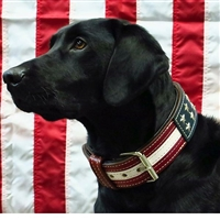 American Flag Leather Large Dog Collar