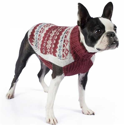 Alpaca Dog Sweaters | Fall Medley