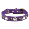 Rhinestones and Amethyst Leather Dog Collar