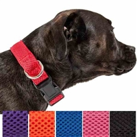 Aero Mesh Dog Collar and Leash for medium to large dogs