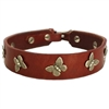 Leather Designer Dog Collars | Butterfly