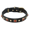 Studded Leather Dog Collar with Red Jasper Gemstones