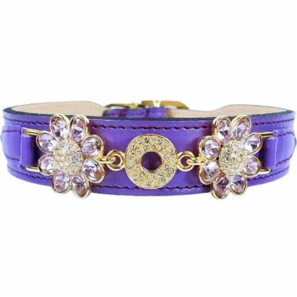 Purple Daisy Leather Designer Dog Collar