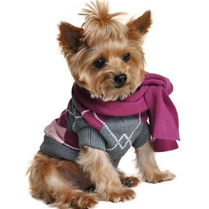 Purple Plaid Argyle Dog Sweater with Matching Scarf