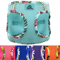 Hawaiian Trim Mesh Dog Harness | Choke Free