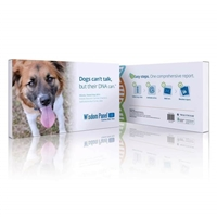 Dog DNA Test | Mars Veterinary Wisdom Panel 3.0