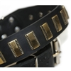 Brass Line Leather Dog Collar
