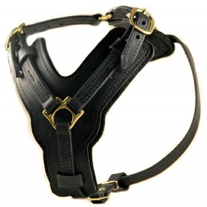 The Victory Leather Large Dog Harness