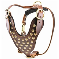 Stud Brother Studded Leather Dog Harness